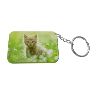 Rectangular Plastic Keychain 48*68mm(Color Edge)-Light Green