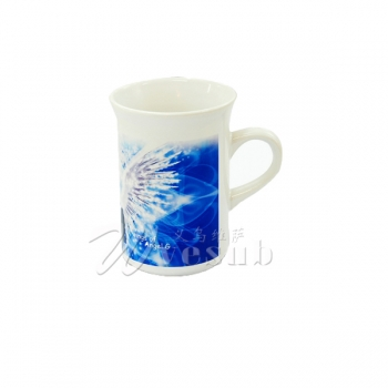 10oz Valgus Coated Mug