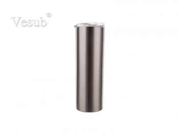 20oz/600ml Stainless Steel Tumbler with Straw & Lid (Silver)