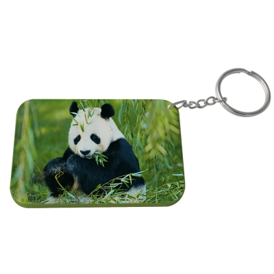 Rectangular Plastic Keychain 57*82mm(Color Edge)-Light Green